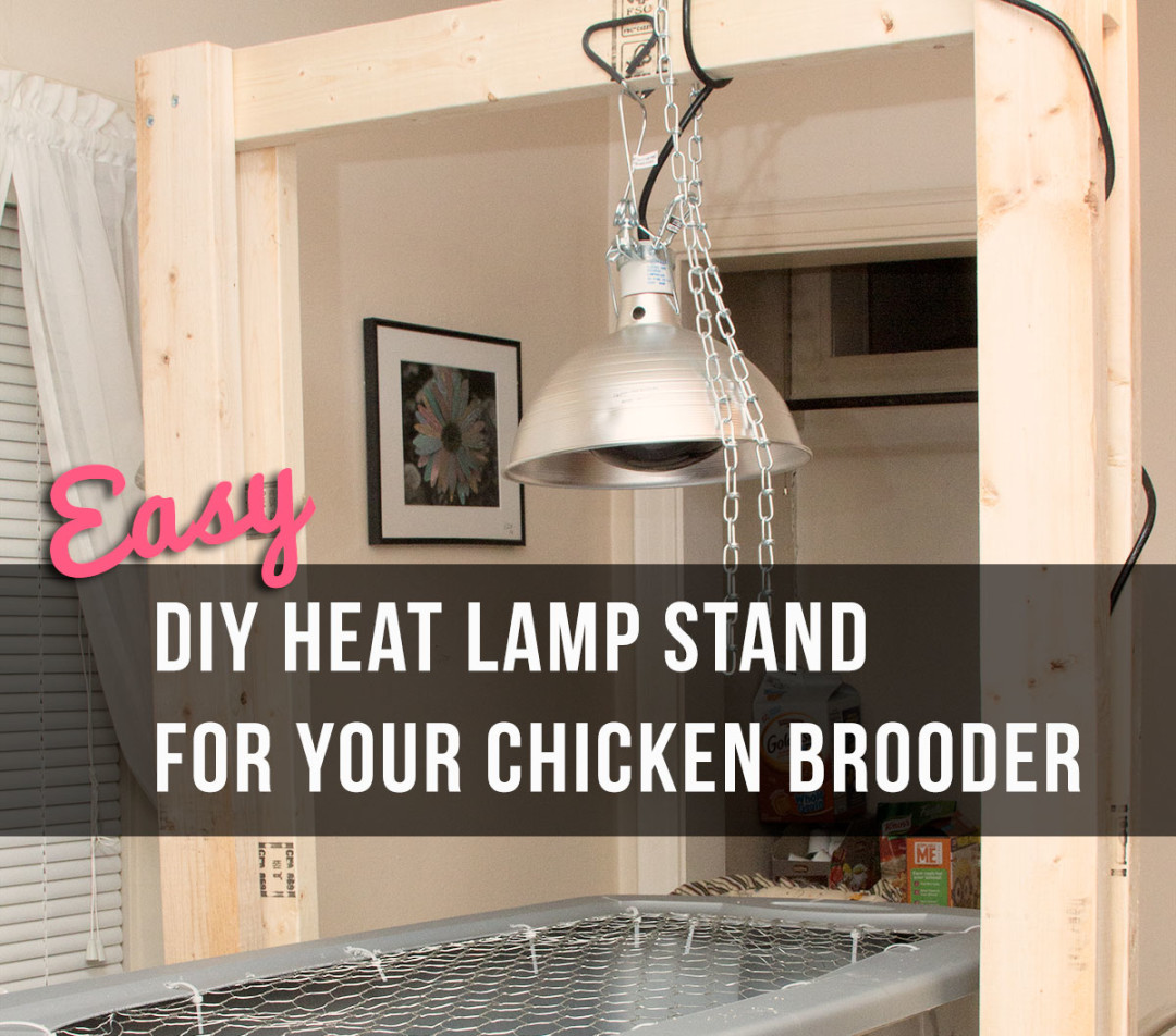 Easy Diy Heat Lamp Stand For Your Chicken Brooder Little Red Farmstead