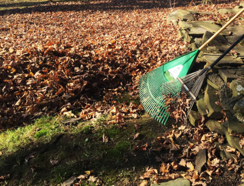 Raking leaves - Little Red Farmstead