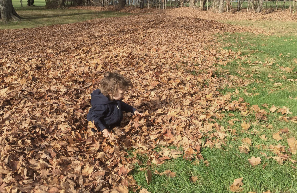 Myles in the leaves - Little Red Farmstead