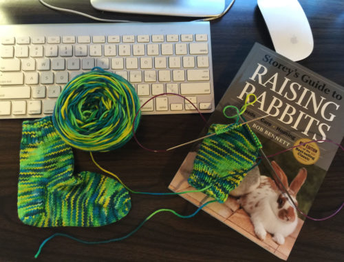 Yarn Along, Nov. 3, 2015 - Little Red Farmstead