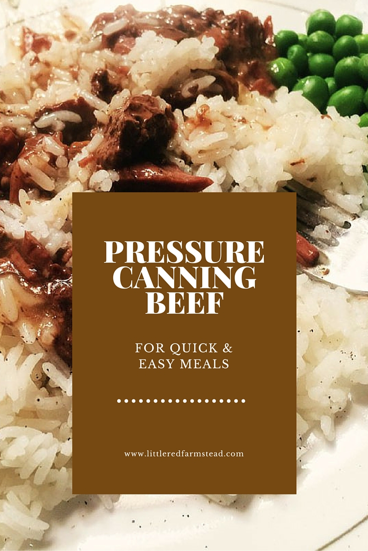 Don't fear the pressure canner! Pressure canning beef for quick, easy meals - Little Red Farmstead