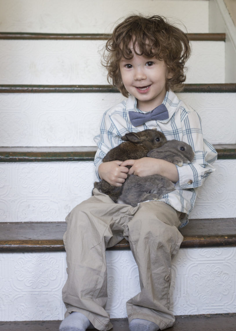 Myles and more bunnies - Photo by Erica Bickel | Little Red Farmstead