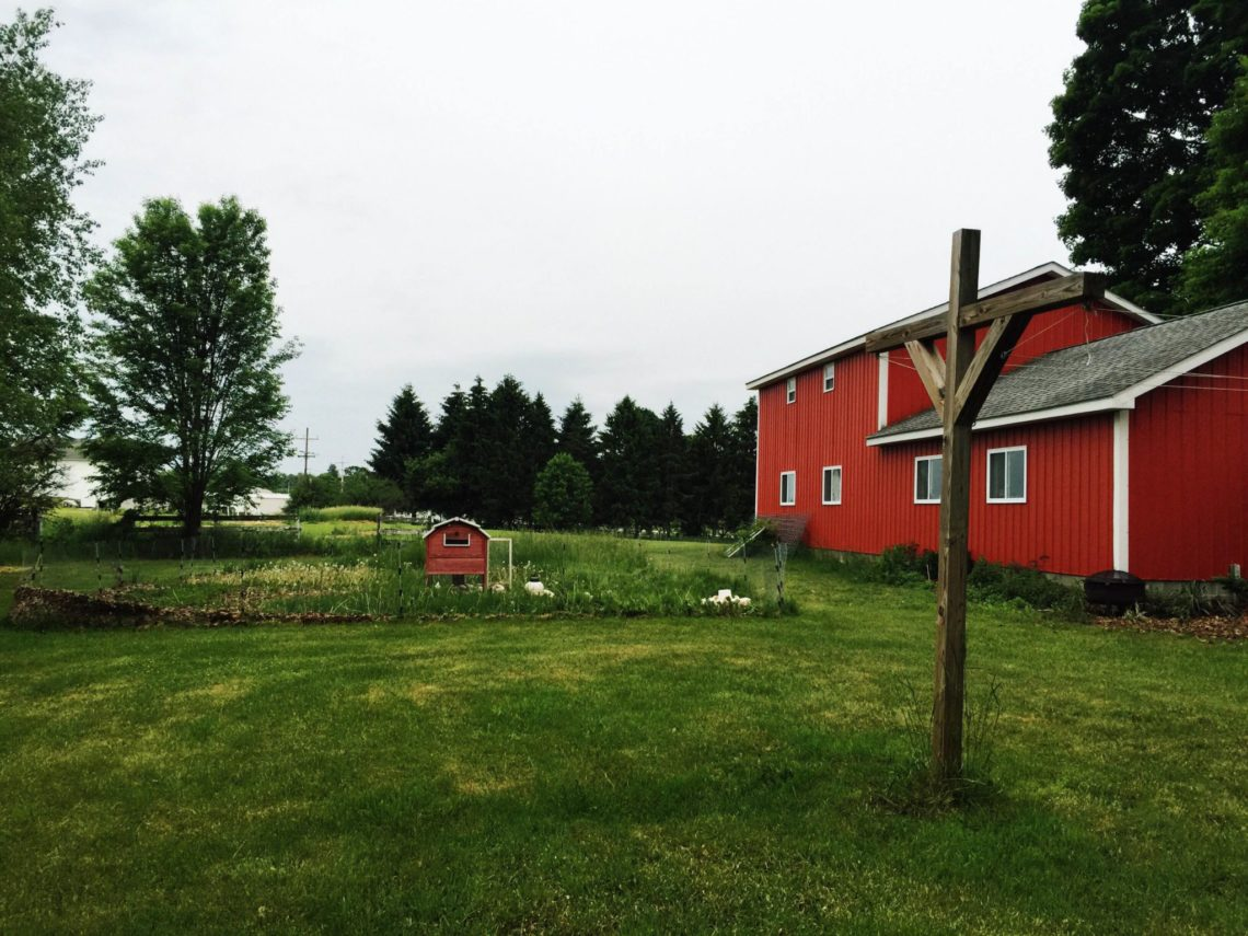 Meat chicken setup behind our barn | Little Red Farmstead