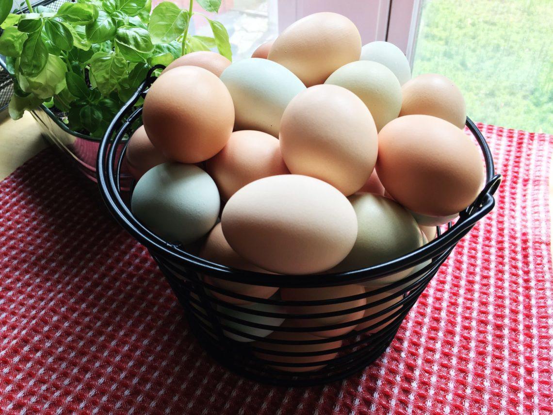 summer-eggs