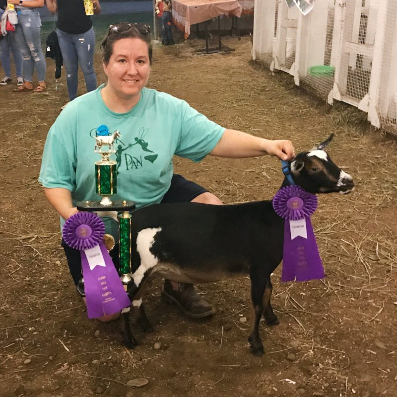 Sundaze Farm Maizey, Best Dairy Doe in Show 2018