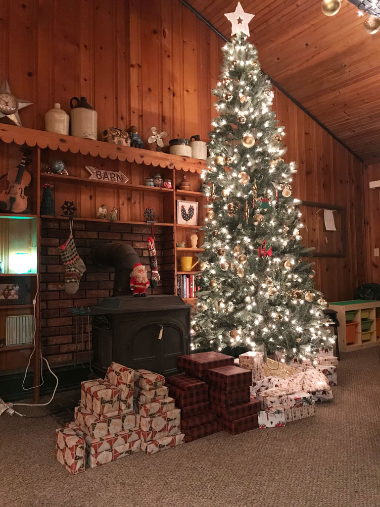 Our Christmas Tree, 2018